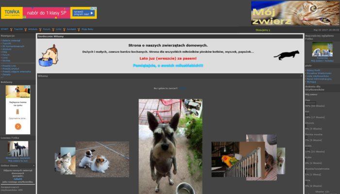 Strona amatorskich zdjęć zwierząt domowych